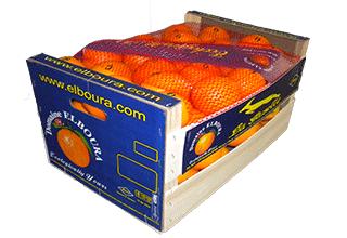 Maroc-Orangen  -   Fruchtversand24, Import, Südfrüchte, Marocco, Maroc-Produkte, Spitzenqualität, Direktimport