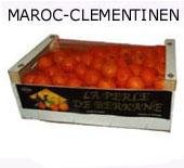 Maroc-Clementinen