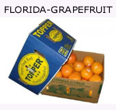 Grapefruit aus Florida